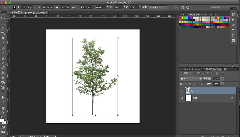 tree_resize